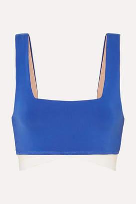 Olympia Activewear - Arrow Stretch Sports Bra - Blue