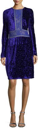 Tadashi Shoji Long-Sleeve Velvet Burnout Cocktail Dress w/ Lace Trim