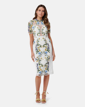 Thurley Vasette Lace Midi Dress