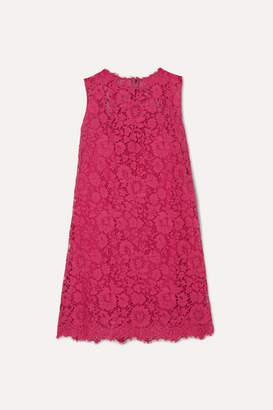 Dolce & Gabbana Cotton-blend Lace Mini Dress - Pink