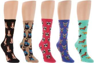 Hot Sox Novelty Socks Set of 5