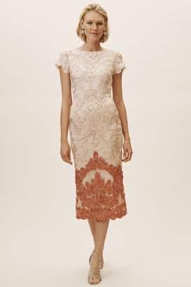 JS Collections Santiago Dress