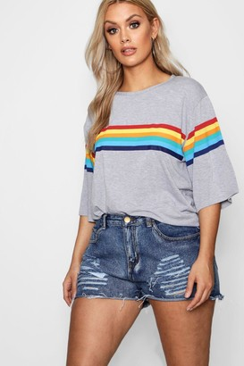 boohoo Plus Rainbow Print T-Shirt
