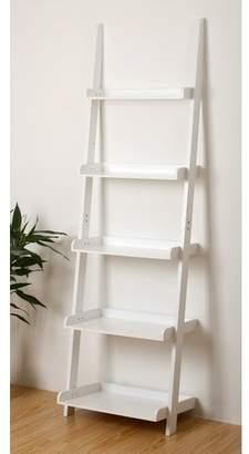 Zipcode Design Ricardo Ladder Bookcase