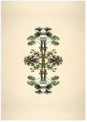 Botanical Reflection