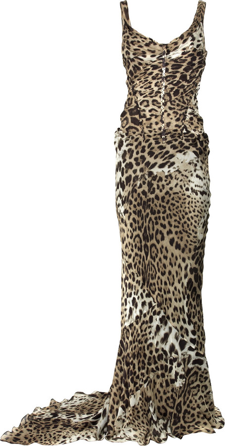 Roberto Cavalli Silk-chiffon leopard-print gown