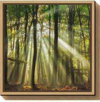 DAY Birger et Mikkelsen Amanti Art Sunny start to the by Piet Haaksma Canvas Framed Art