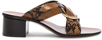 Chloé Rony Python Print Leather Cross Strap Mules