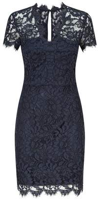 SET Fitted V-Neck Lace Dress