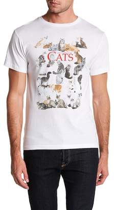 Body Rags Bunch of Cats Poster Graphic Tee