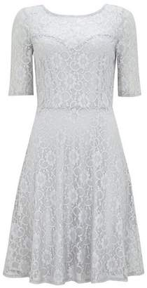Wallis Silver Lace Fit And Flare Dress