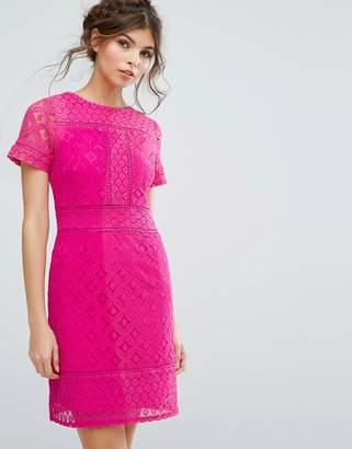 Oasis Lace Shift Dress $73 thestylecure.com
