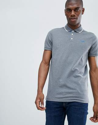 Hollister tipped pique polo seagull logo slim fit in mid gray