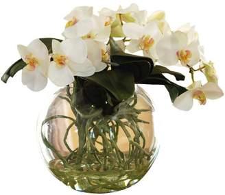 Jane Seymour Botanicals Phalaenopsis Orchid Floral Arrangement in Decorative Vase