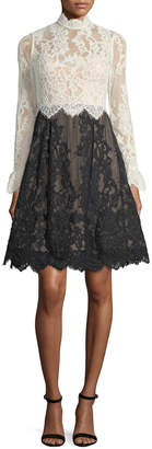Catherine Deane High-Neck Scalloped Lace Fit-and-Flare Cocktail Dress