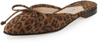 Manolo Blahnik Suede Bow Ballerina Mule Flat, Leopard $695 thestylecure.com