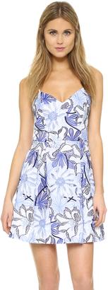 Parker Jacquel Dress $398 thestylecure.com
