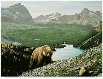 Parker Trademark Fine Art ALI32538-C3547GG Lake Ohara by Ron Canvas Art, 35x47