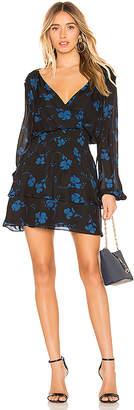 Parker Clementine Dress