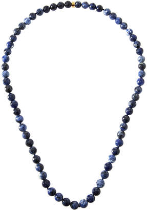Nest Jewelry Long Sodalite Necklace