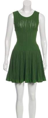 Alaia Fit and Flare Mini Dress