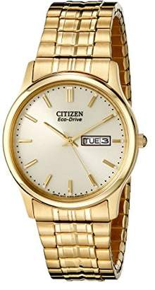 Citizen Men's Eco-Drive Expansion Band Watch with Day/Date