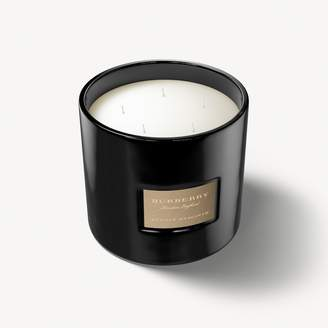 Burberry Purple Hyacinth Scented Candle - 2kg