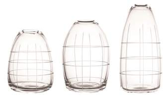 canvas home Wren Set of 3 Etched Glass Vases