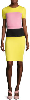 French Connection Lula Colorblocked Stretch Sheath Dress