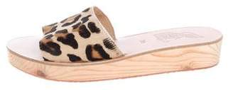 Ancient Greek Sandals Cheetah Platform Flats