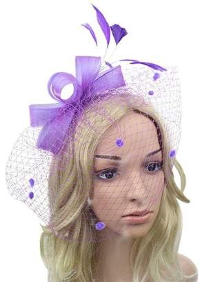Urban CoCo Women s Bow Feather Net and Veil Fascinator Cocktail Party Hair  Clip Hat b21884b74b95