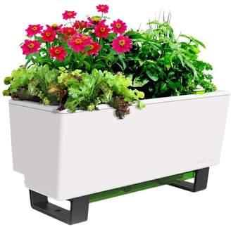 Mini Self Watering Bench Planter
