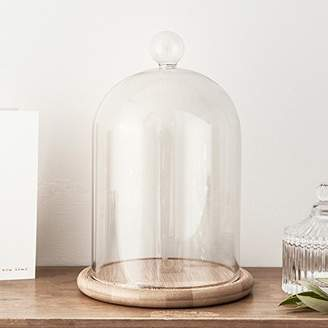 """Cloche Glass Bell Jar Display Dome with Bamboo Base - 9"""" x 6"""""""