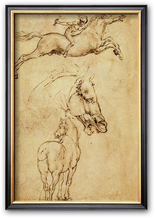 """Art.com Sketch of a Horse"""" Framed Art Print by Leonardo da Vinci"""