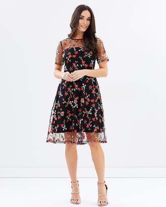 Dorothy Perkins Rose Embroidered Dress
