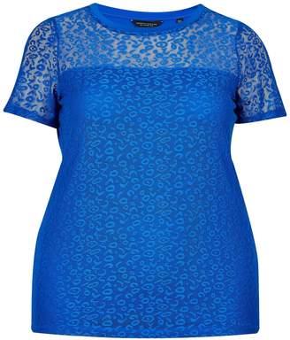 b31593ac5244 Dorothy Perkins Womens   Dp Curve Cobalt Leopard Lace T