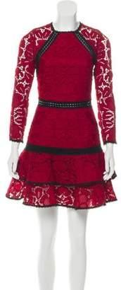 Alexis Lace-Trimmed Mini Dress