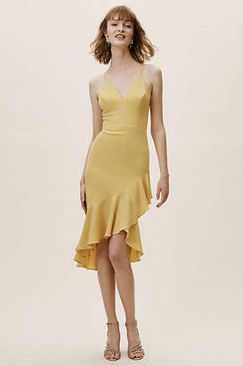 Dress the Population Connelly Wedding Guest Dress