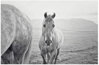 Pottery Barn Cute Western Horse by Jennifer Meyers