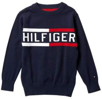 Tommy Hilfiger Logo Crew Neck Sweater (Little Boys)