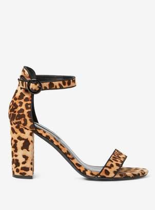 8985a2eaeaa1 Dorothy Perkins Womens Leopard  Shimmy  Block Heel Sandals