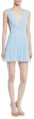 Fame & Partners Briella Pleated Georgette Mini Dress