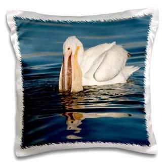 Salton 3dRose USA, California, Sea, Sea NWR. American white pelican. - Pillow Case, 16 by 16-inch