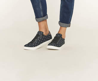 Oasis SPOT TRAINERS