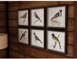 Loon Peak Spring Soldiers Bird 6 Piece Framed Graphic Art Set