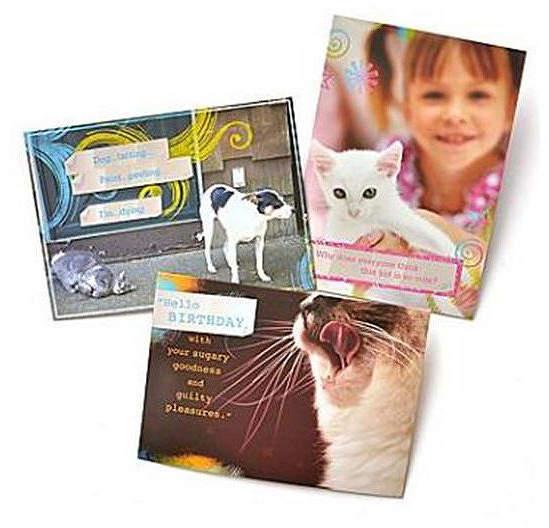GARTNER STUDIOS Gartner Greetings Pet Humor Greeting Cards
