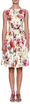 Dolce & Gabbana Sleeveless High-Neck Floral-Print Cotton Midi Dress