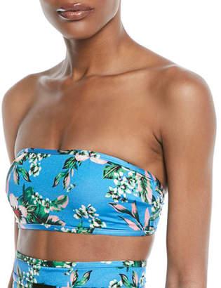 Diane von Furstenberg Floral-Print Straight Bandeau Swim Top