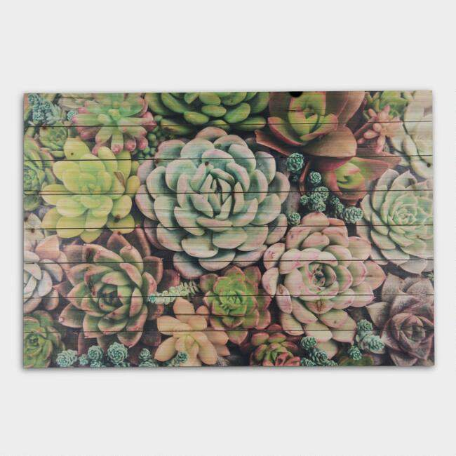 Succulent Garden on Wood Wall Art