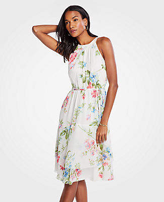 Ann Taylor Petite Floral Belted Flare Dress